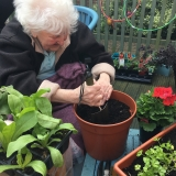 Fun in the garden for Riversway