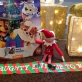 Naughty elf keeping the magic alive at Springhill Care Home